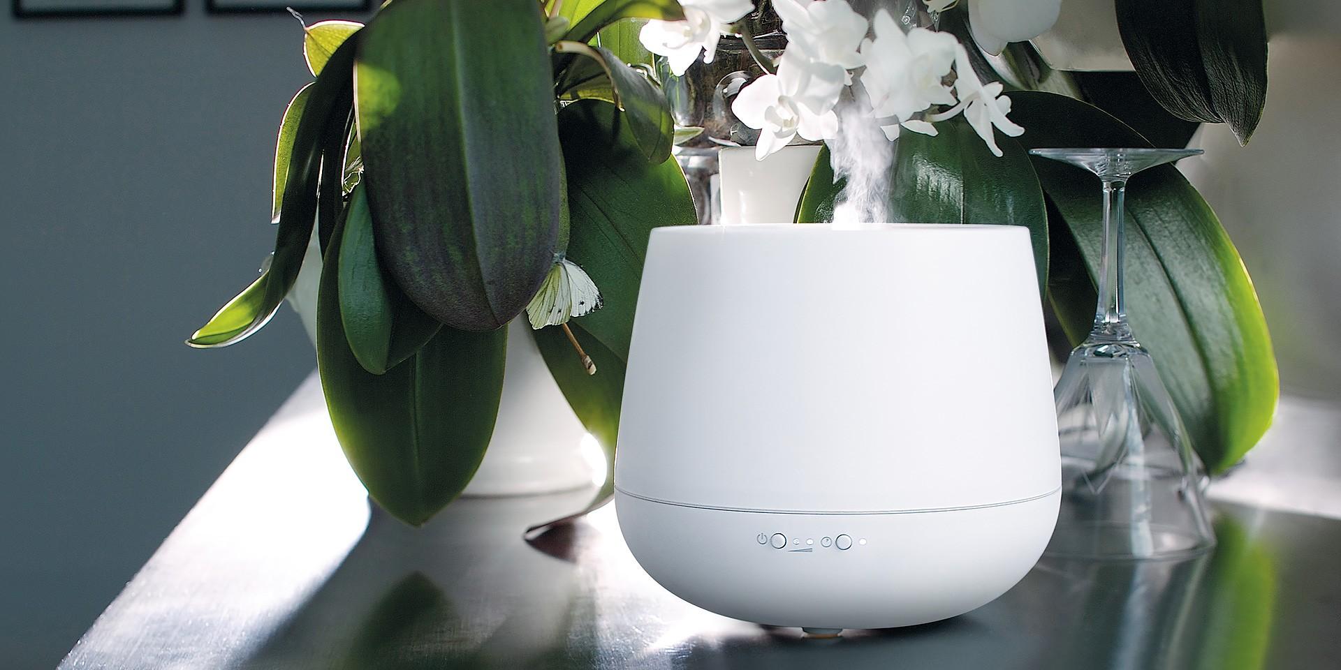 Увлажнитель воздуха для растений