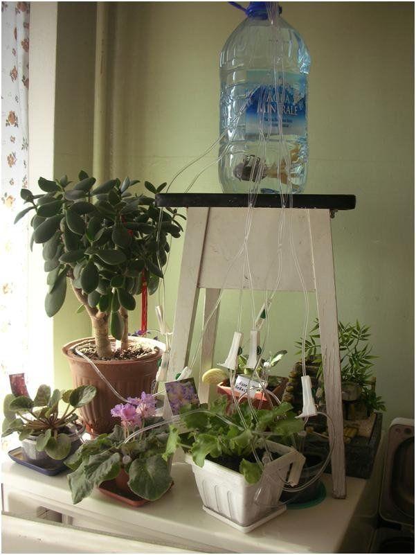 система самодельного автополива растений